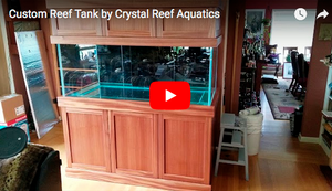 Custom Reef Tank by Crystal Reef Aquatics - Video