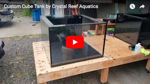 Custom Cube Tank by Crystal Reef Aquatics - Video