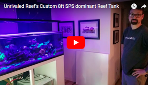 Unrivaled Reef's Custom 8ft SPS dominant Reef Tank