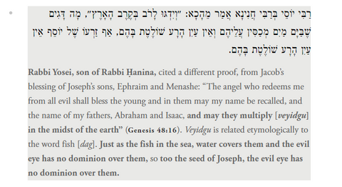 fish evil eye in talmudic translation