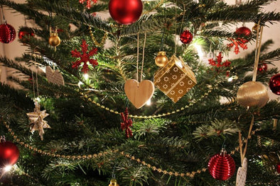 6 Essential Steps For Choosing the Right Christmas tree