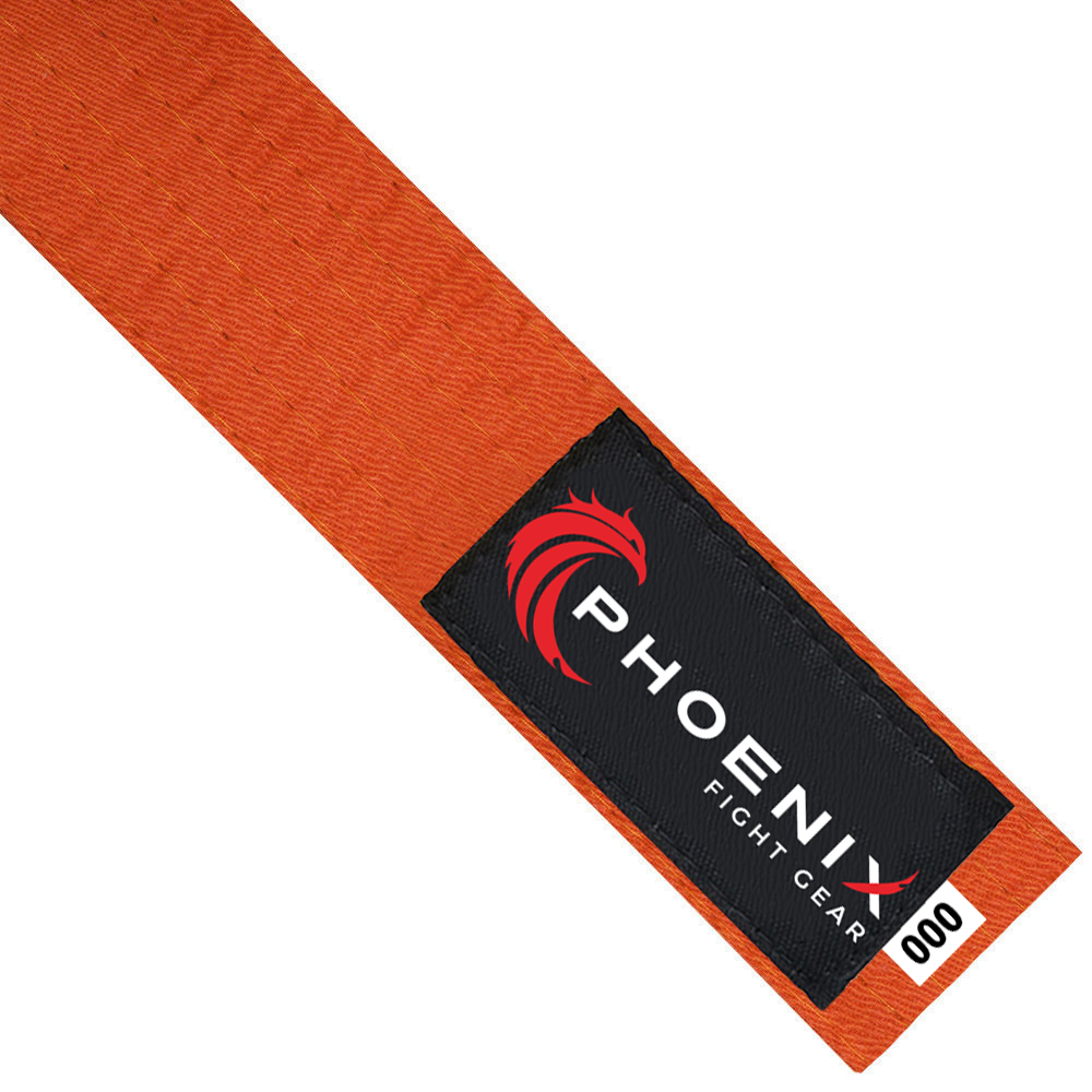 Martial Arts Belt - Orange