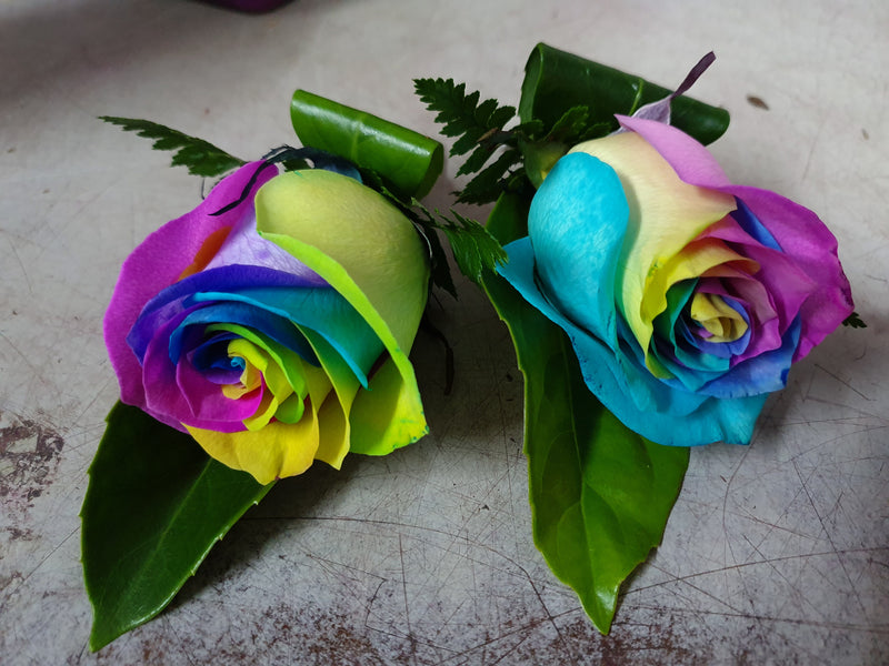 RAINBOW ROSES BUTTONHOLE set of 2