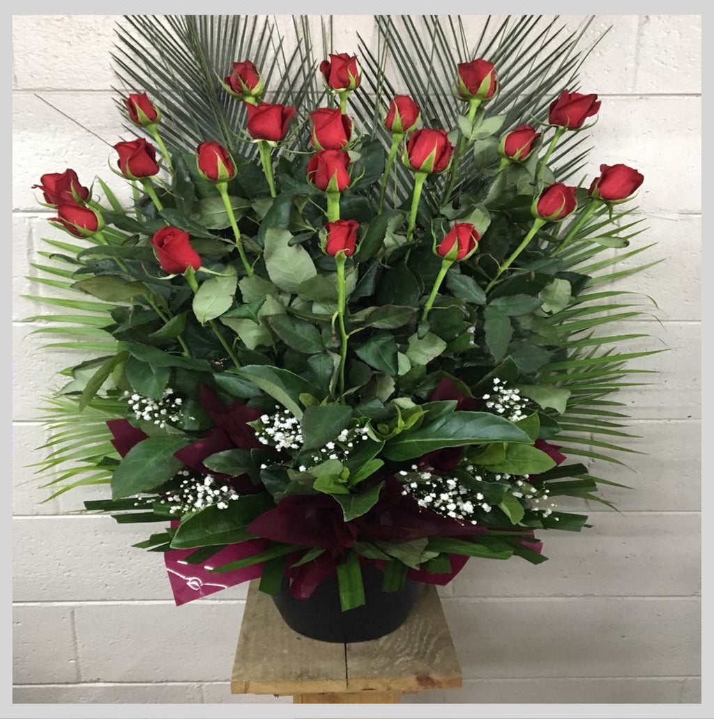 20 RED ROSES POT ARRANGEMENT