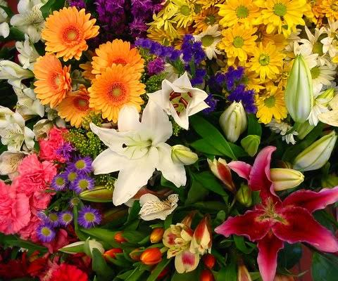 IMAGE B21 FLORIST CHOICE SEASONAL MIXED BUNCH