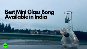 Best Mini Glass Bong You Can Buy in India.