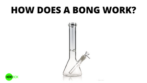 How Does a Bong Work?