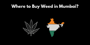 Smoking Weed In Mumbai