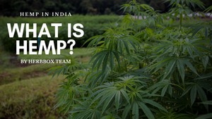 What Is Hemp & Is Hemp Legal in India?