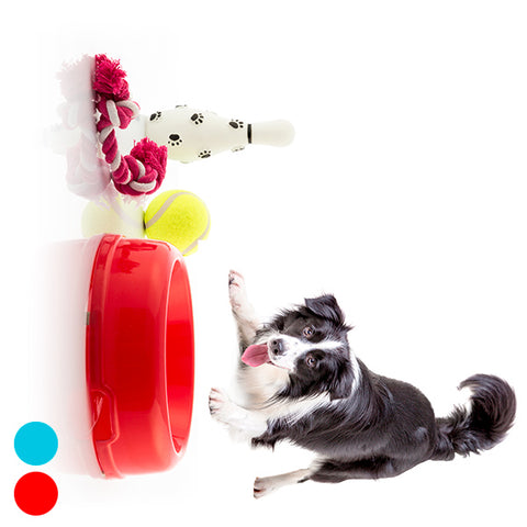 Set of Dog Toys 4 Pieces