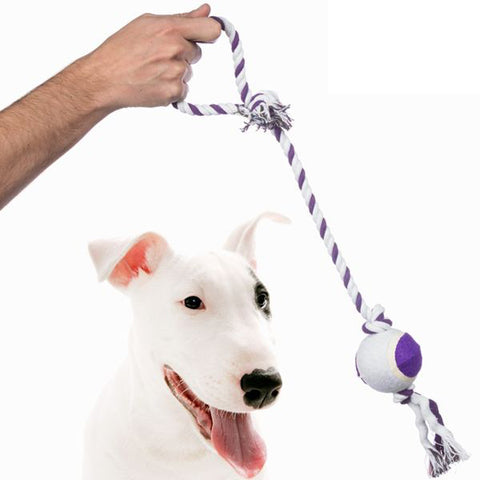 Pet Prior Ball on a Rope for Dogs
