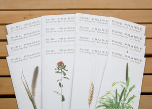 Pure Prairie Ornamental Grasses - Package of 16