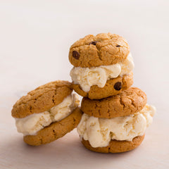 Vegan Gluten Free Ice Cream Sandwiches  Partake Foods