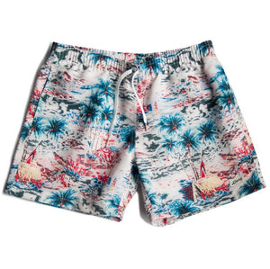 Bather Daytime Hawaii Swim Trunks