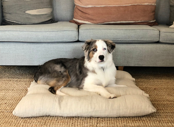Scrappy Organic Hemp Dog Bed