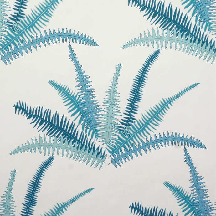 Canyon Ferns - CristinaBuckley