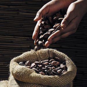 5 Grades of coffee beans and what you need to know