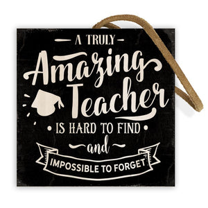 Amazing Teacher