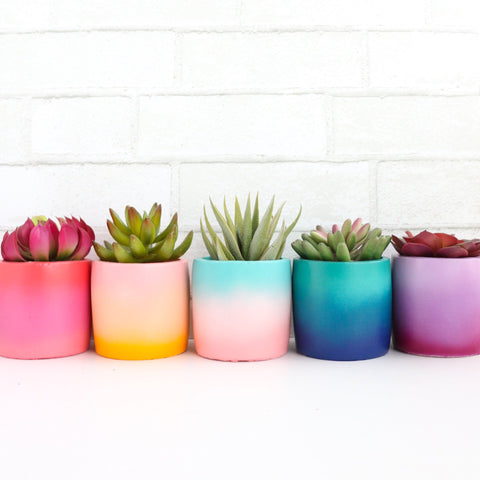 Mini Gradient Ceramic Planter