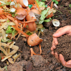 hands and compost