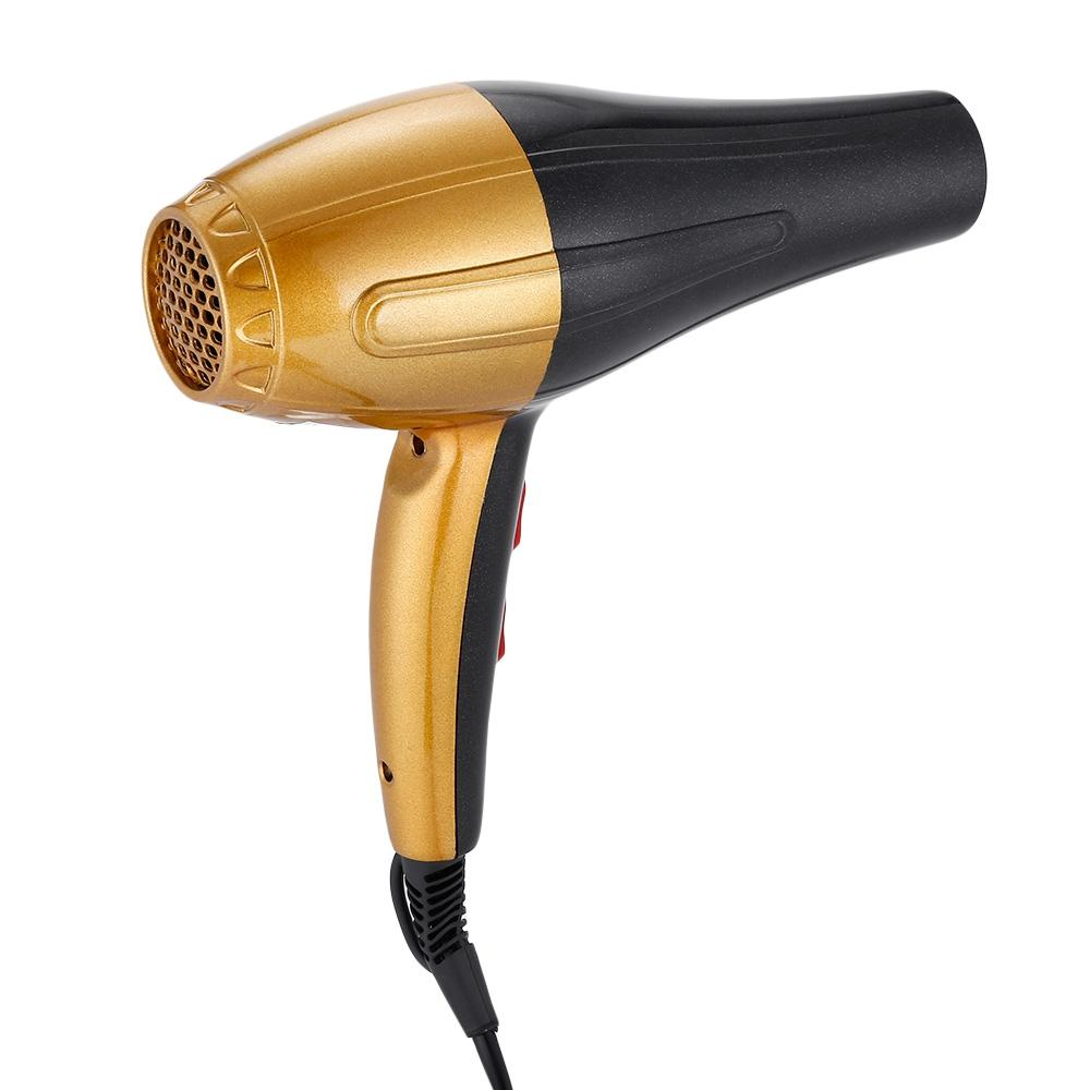 Guowei GW - 690 Electric Professional Salon Hair Blow Dryer - Alilight.net