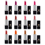 SHANY Slick & Shine Lipstick Set - Set of 12 Famous Colors : Multicolor Lipstick Palettes : Beauty - Alilight.net
