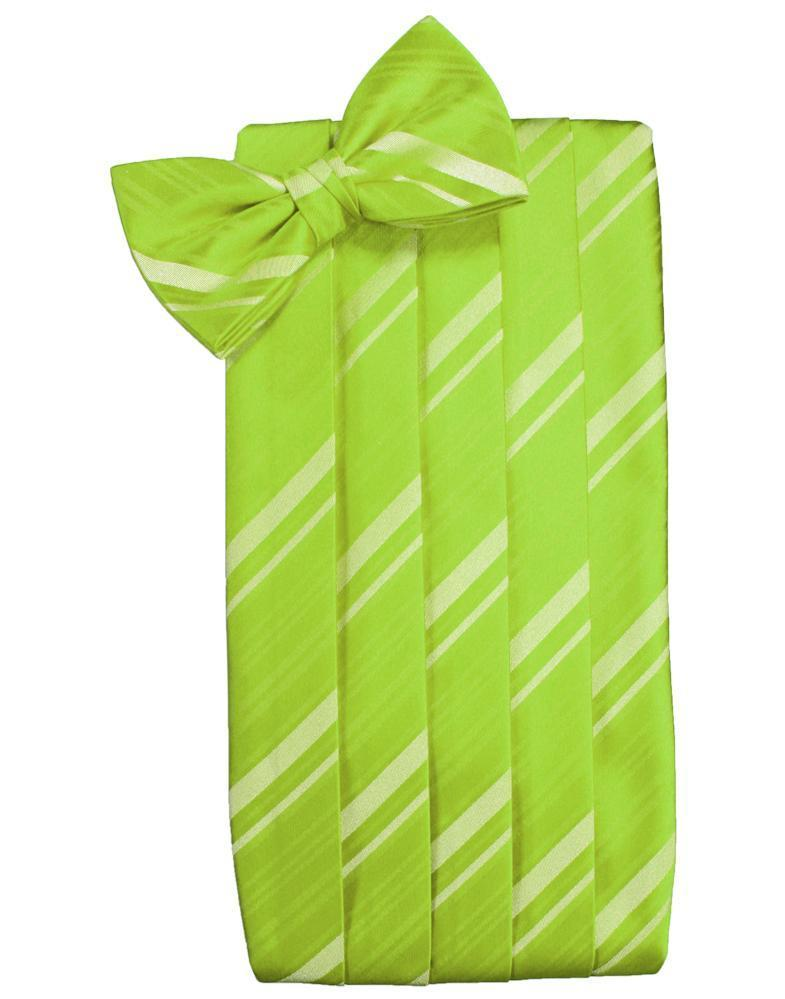 Lime Striped Satin Cummerbund
