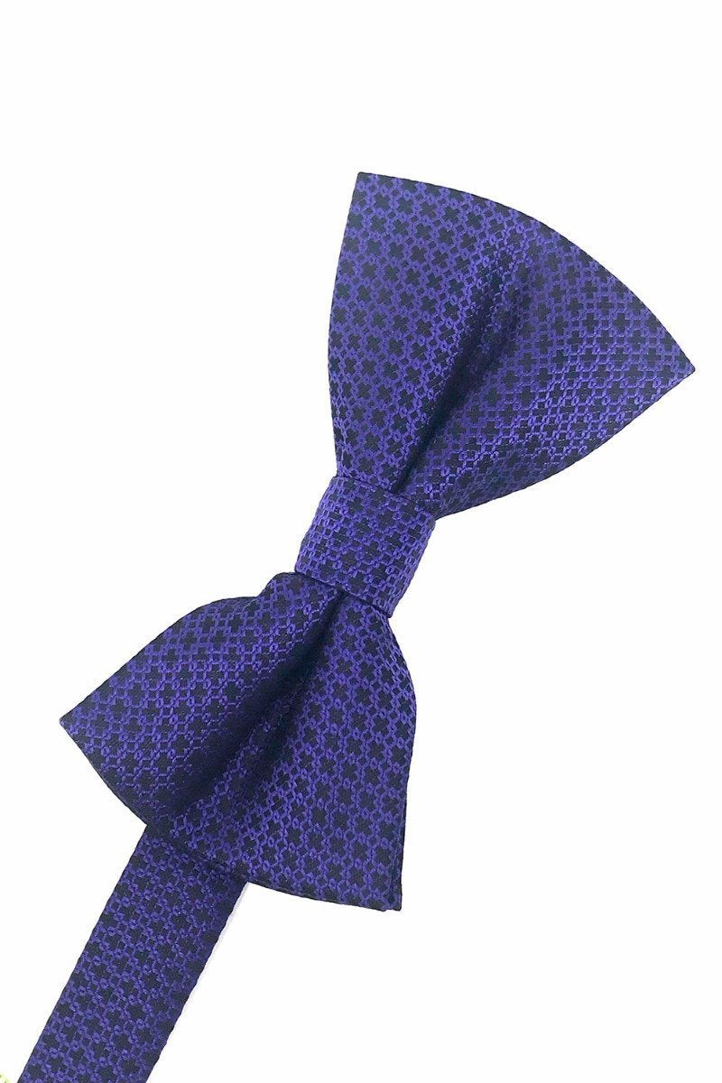 Purple Regal Bow Tie