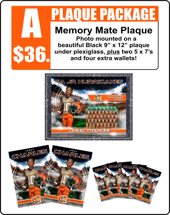 A. Plaque Package
