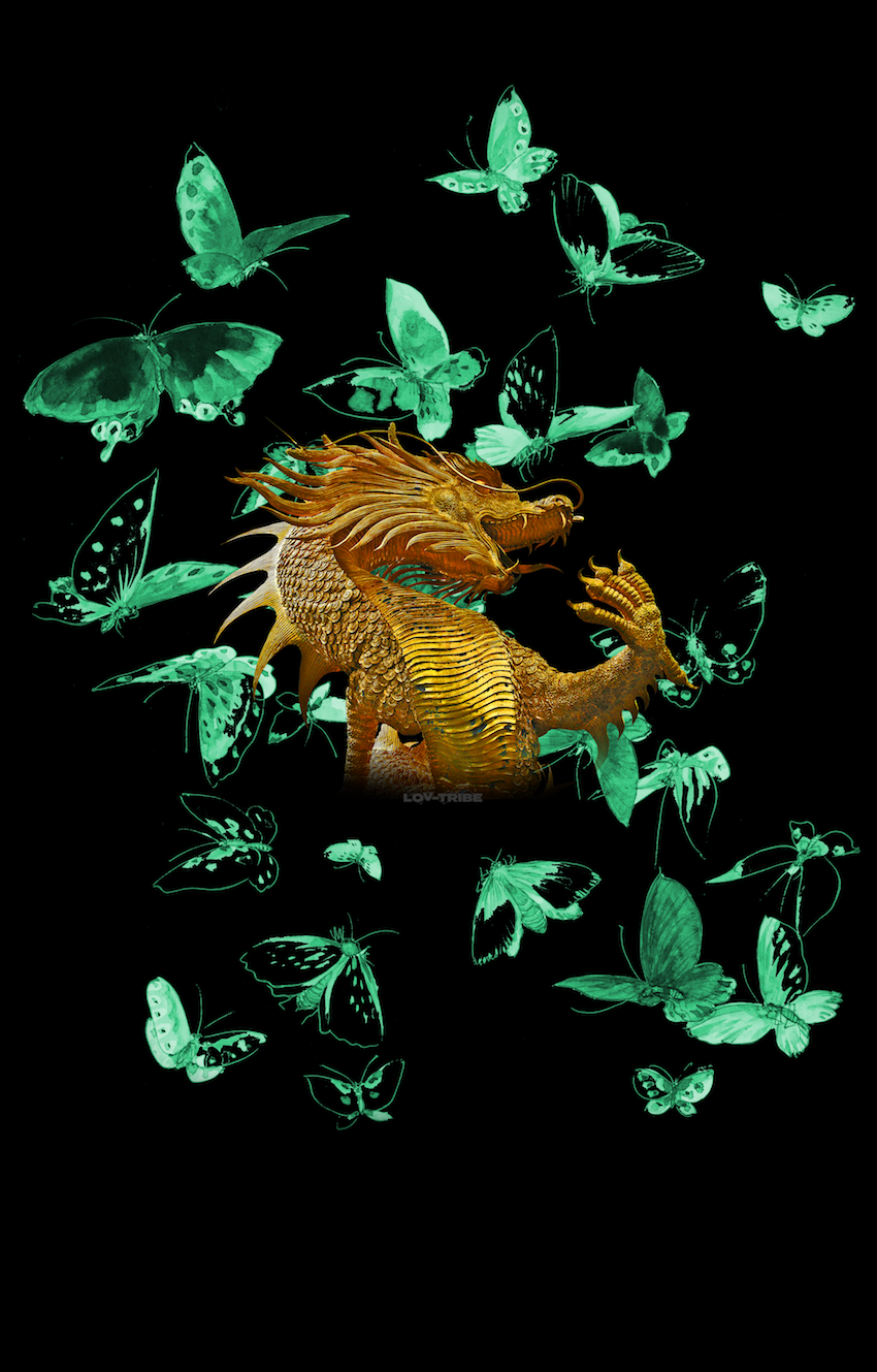 Long Men's T-Shirt *DRAGON BUTTERFLY