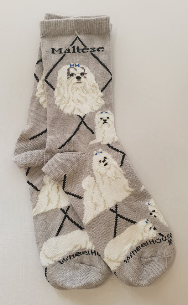 Human Socks (Maltese to Yorkie)