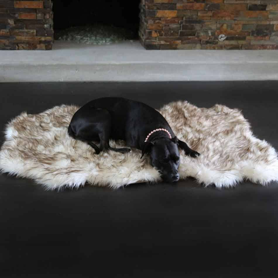Orthopedic Shag Bear Rug