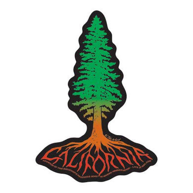 California Redwood Roots Magnet