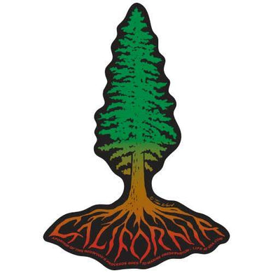 California Redwood Roots Sticker