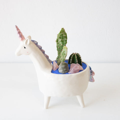 Unicorn Planter With Succulents - Sage Sisters