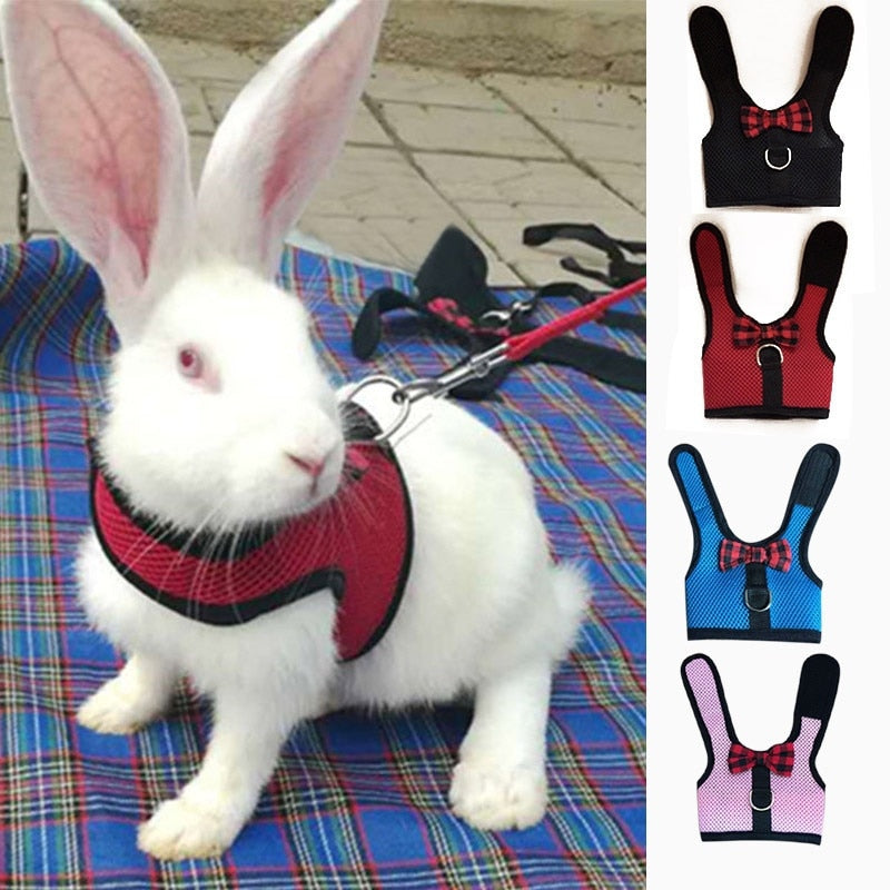 Rabbits Hamster Vest Harness With Leas Bunny  Mesh Chest Strap Harnesses Ferret Guinea Pig Small Animals Pet Accessories S/M/L 4