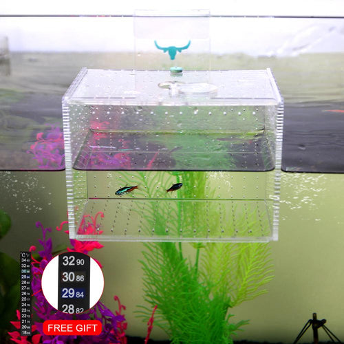 Senzeal Aquarium Acrylic transparent isolation box fish reproduction Incubator Box With Sucker For Baby Fish Hatchery Rooms