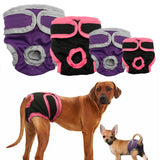Female Dog Shorts Puppy Physiological Pants Diaper Pet Underwear For Small Meidium Girl Dogs