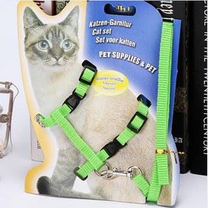Cat Harness And Leash Hot Sale 3 Colors Nylon Products For Animals Adjustable Pet Traction Harness Belt Cat Kitten Halter Collar