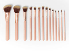 BH brushes set of 14 - Liquidation Cart