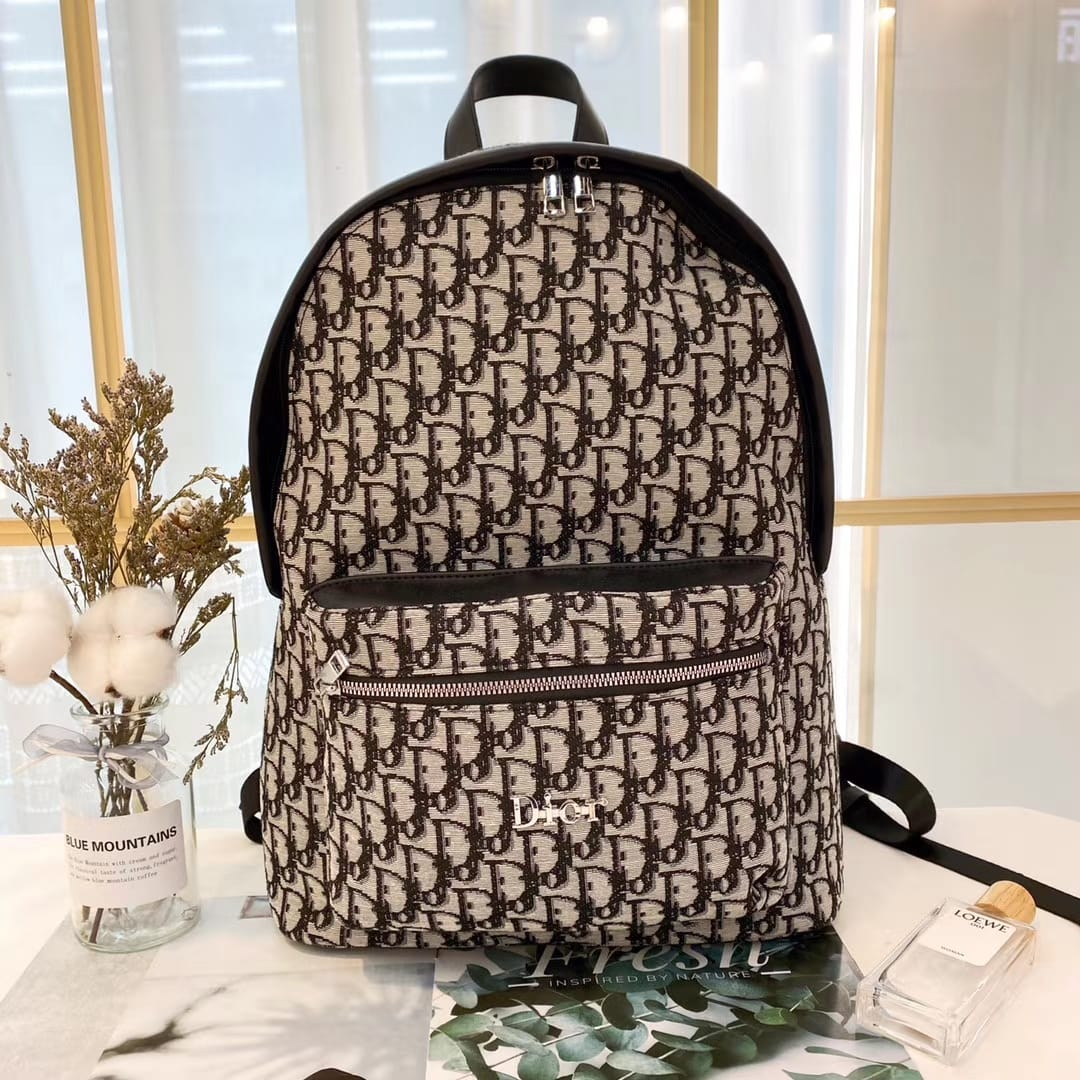 Dior perfect luxury backpack for men and women
