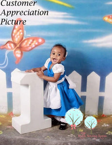 Belle Work Dress  - Costume for Dress Up  - School Play Costume - Birthday Party - Blue Work Dress with Apron