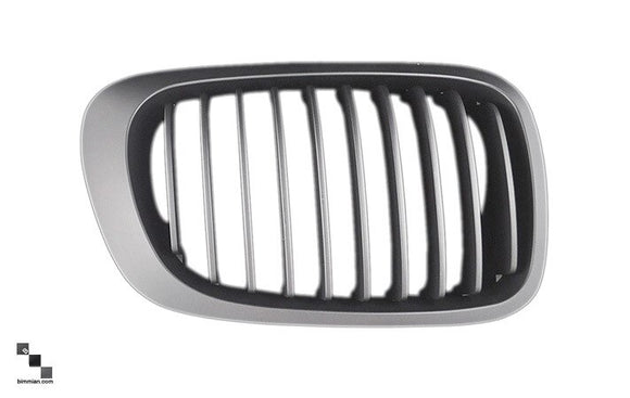 Painted Kidney Grilles for BMW E46 3 Series Coupe and Convertible (Pre-LCI) & M3