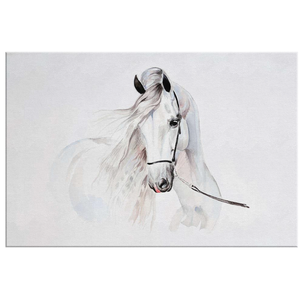 Andalusian Watercolor Canvas