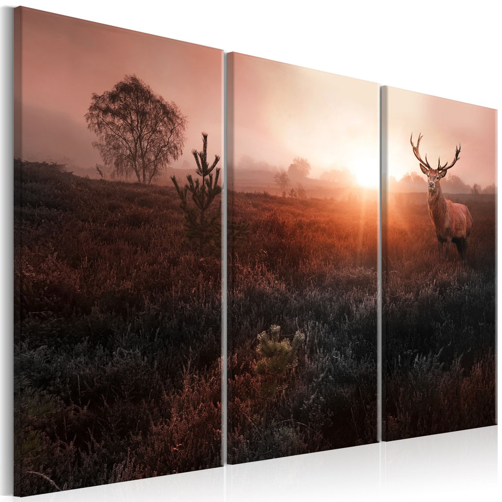 Quadro - Deer in the Sunshine I