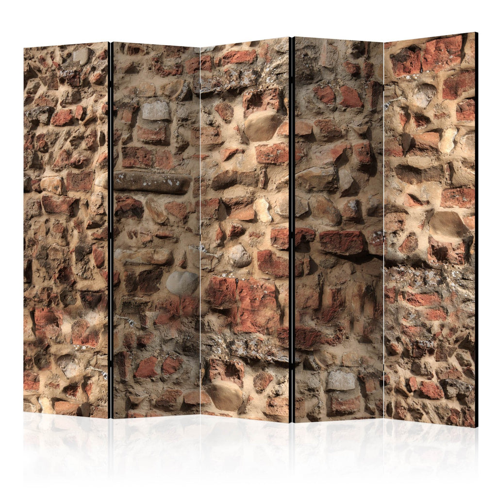Paravento - Ancient Wall II [Room Dividers]