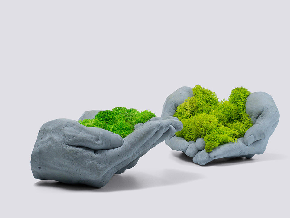 Concrete Hands with Scandinavian Reindeer Moss