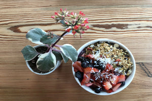 acai bowl with fruit and granola toppings drizzled with honey. bowl is placed next to a table plant