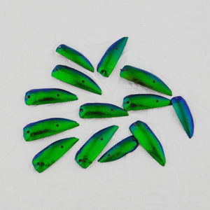 Jewel Beetle Wings_50 Pieces_Double Drilled