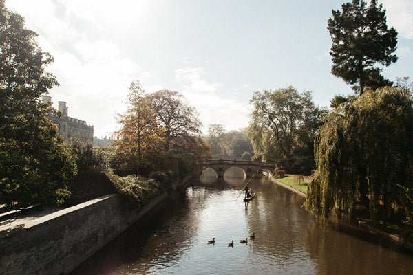 A picturesque autumnal scene of a canal with a bridge and some ducks